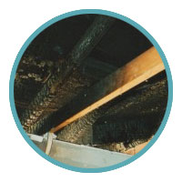 Tucson Fire and Water Damage Restoration